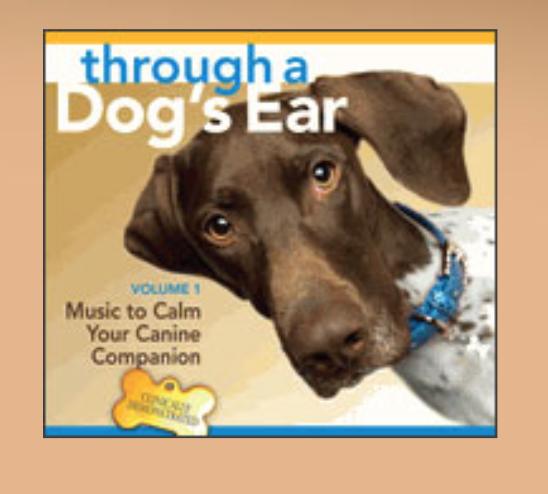 photo: through a Dog's Ear